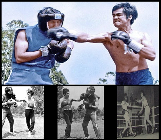 Martial Boxers - Bruce Lee